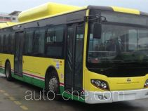 Wuzhoulong FDG6113HEVN5-1 hybrid city bus
