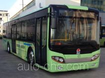Wuzhoulong FDG6121EVG1 electric city bus