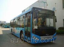 五洲龙牌FDG6121HEVG型混合动力城市客车