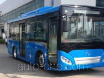 Wuzhoulong FDG6851EVG7 electric city bus