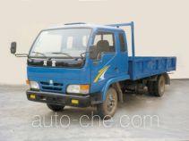 Shuangfu FJG4010P low-speed vehicle