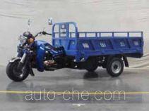 Foton Wuxing FT250ZH-11E cargo moto three-wheeler