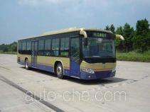 Heke HK6118G city bus