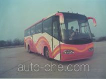 Dama luxury coach bus