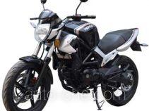 Honlei HL250-19P motorcycle