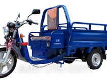 Jinyi JY4500DZH-3C electric cargo moto three-wheeler