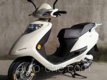 Leshi LS100T-12C scooter