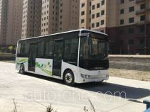 Beiben North Benz ND6860BEV00 electric city bus