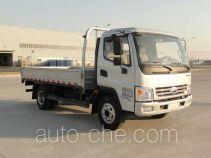 Karry SQR1044H29D cargo truck