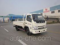 Shifeng SSF1041HDJ64 cargo truck