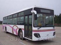 Xiang SXC6105T3 bus