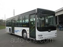 CSR Times TEG TEG6109NG02 city bus
