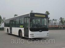 CSR Times TEG TEG6129GJ50 city bus