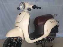 Wangye WY70T-13C scooter