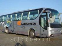 Golden Dragon XML6127J18 bus