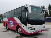 Golden Dragon XML6807J35N bus