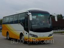 Golden Dragon XML6857J28 bus