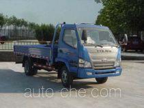 T-King Ouling ZB1043LDD6F легкий грузовик