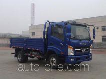 T-King Ouling ZB1040UDD6V cargo truck