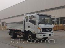 T-King Ouling ZB1040UPD6V cargo truck