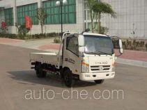 T-King Ouling ZB1080JDE3F cargo truck