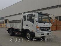 T-King Ouling ZB3041UPD6V dump truck